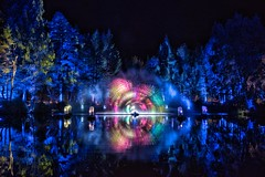 Enchanted Forest - Shimmer (Photeelover) Tags: trees forest light abstract lights dark scotland performance loch enchantedforest enchanted pitlochry reflection water still night colour tree show perthshire ef2016 spectacular