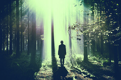 """Contact"" (helmet13) Tags: d800e raw cymk she woman forest trees sunlight ray backlight aoi heartaward peaceaward world100f platinumpeaceaward 300faves"