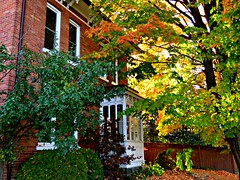 Bowmanville, ON (Snuffy) Tags: fall seasons bowmanville ontario canada autofocus