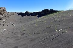 Miðlína, the rift (Chris (will be back)) Tags: iceland islande vacation vacances travel voyage chrisissy atempsperdu ile island rift valley faille sable noir black sand reykjanesskagi grindavík outdoors nature