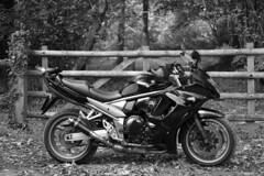 Ready (adrianwoolgar) Tags: bandit blackandwhite bw suzuki gsxr fa gsx1250 biker motorbike motorcycle countryside