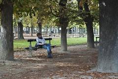 reader (tcd123usa) Tags: italyparislondon2016 leicadlux4 luxembourggarden paris lejardindeluxembourg