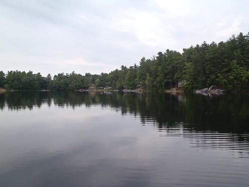 Deer Pond - www.amazingfishametric.com
