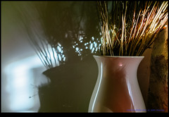 160929-0956-XM1.jpg (hopeless128) Tags: france vase eurotrip 2016 shadows wall nanteuilenvalle poitoucharentes fr