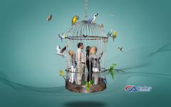 Atelier2 - Liberdade1 (Carlos Atelier2) Tags: carlos atelier2 gaiola pssaros aves manipulao pessoas