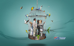 Atelier2 - Liberdade1 (Carlos Atelier2) Tags: carlos atelier2 gaiola pássaros aves manipulação pessoas