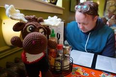 DSC00445 (The Crochet Crowd) Tags: crochetmoose amigurumi moose crochet doll alaska britishcolumbia thecrochetcrowd michaelsellick jeannesteinhilber danielzondervan crochetcruise mooseontheloose