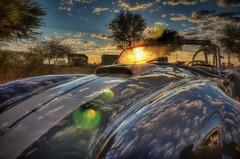 Early morning snake (Spebak) Tags: spebak canon70d canon canondslr sportscar shelby cobra sunrise bluesky clouds trees autumn 2016 racecar
