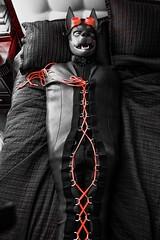 (Kory / Leo Nardo) Tags: rubberdawg dawg pup play puppy neoprene sleepsack sleep sack mummy mummified bound bondage tied restrained googles red bed kory leo pupleo 2016