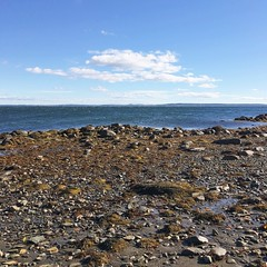 (amy higgins) Tags: iphone low tide penobscot bay mid coast maine ocean water sky clouds shire rocks landscape