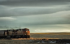 BNSF crossing paths... (Alvin Harp) Tags: nex5n january 2013 bnsf train locomotive montana dusk eveningclouds goldenlight railways transportation alvinharp