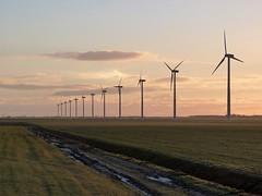 in a line   explored 16-11-2016 (Roel Oortwijn) Tags: energy energie wind molen polder lowland noordholland netherlands horizon zonsopkomst sunrise fz38 panasonic lumix explored explore