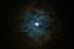 Lunar halo (flubatti) Tags: