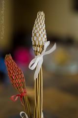 Hand made buds (SambitMohapatra) Tags: 50mm d5100 nikon