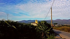 Central America... ?? No... This is Tuscany ( Italy ) (amos.locati) Tags: pistoia italia amos locati landscape italy palms palma campanile cielo sky nuvole clouds nori bell tower village paesaggio panoramas