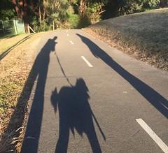 Evening walk (PsJeremy) Tags: shadowplay dog