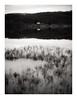 Plot on the Landscape (Dylan Nardini) Tags: scotland achray local 2016 winter trossachs nikon