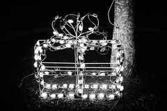 The Present (SopheNic (DavidSenaPhoto)) Tags: fujinon35mmf14 fuji blackandwhite edavillerailroad christmaslights xe1 monochrome lowkey carver massachusetts unitedstates us
