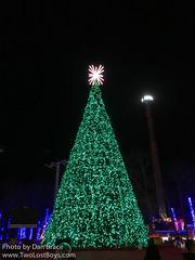 Holiday in the Park (Disney Dan) Tags: 2016 america christmas christmasseason greatadventure holidays nj newjersey northamerica november novembre other sixflags sixflagsgreatadventure travel usa unitedstates unitedstatesofamerica winter