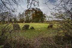 Rollright Stones (Evoljo) Tags: therollrightstones oxfordshire stones circle ancient cotswolds nikon d500