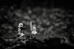 La sentinelle n&b (shoube) Tags: 50d 100mm 100mmmacro canon lego starwars afol figurine stormtrooper noiretblanc nb brick lukeskywalker luke skywalker vosges lorraine 88 dommartinsurvraine