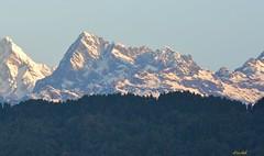 Mt Narsing! (draskd) Tags: himalayas sikkim gangtok kanchenjungha himalayanpeak kanchenjungarange mtnarsing nikond7100