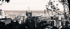 barcelona (nicouze) Tags: barcelona sea blackandwhite bw panorama mer familia spain noiretblanc panoramic espana espagne sagrada barcelone panoramique