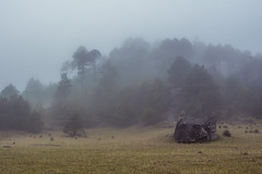 Foggy Day (Xavy Vp) Tags: mist mexico nikon foggy valle dia nublado puebla niebla piedras vp xavy encimadas misticismo 1224mmf4 d7100
