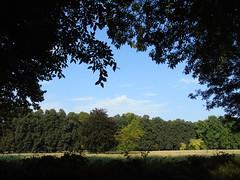 DSC00192 (NicolD.) Tags: park summer italy parco nature landscape warm italia estate natura villa sole venezia paesaggio dayout friuli veneto architectures villavarda