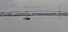 Yantlet (Hawkeye2011) Tags: uk boat marine ships maritime riverthames saltwater pla 2015 queenelizabethbridge surveyvessel rainhammarsh yantlet