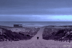 Fin d'après-midi (Cathy Baillet) Tags: sky mer france silhouette couple dune sable bleu promenade plage océan aquitaine lasalie lepyla cathybaillet