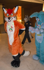 DSC_0130 (Acrufox) Tags: chicago illinois furry midwest december ohare rosemont convention hyatt regency 2014 fursuit furfest fursuiting acrufox mff2014