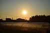 20151106_021_2 (まさちゃん) Tags: 夕陽 光 茜色 ビニールハウス 夕焼け空 夕暮時