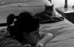 Post holiday fatigue (Irina1010) Tags: thanksgiving bw pet max monochrome cat bed lazy tired fatigue oana postholiday 2015