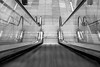 Wheeeeeeeeeee (Liz Liz Liz Liz) Tags: uk november england blackandwhite monochrome up stairs canon britain sheffield yorkshire escalator slide down move handrail conveyor southyorkshire meadowhall movingstaircase 2015 eos7d canon7d efs1018mmf4556isstm