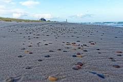 ESL_3477 (Sigi.Ludwig) Tags: sea white black art beach stone strand sand sigma steine bunt plaja nikond800 artlens