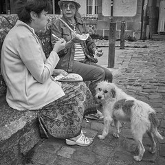 (thierrylothon) Tags: bretagne morbihan auray saintgoustan bw personnage people attitude phaseone captureonepro sony sonyrx1r rx1r noirblanc monochrome c1pro streetphoto publication flickr fluxapple animal