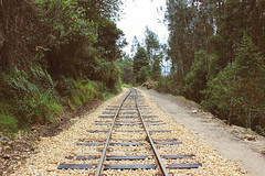difficult roads often lead to beautiful destinations (ohvero) Tags: trees stones train road green woods railroad rail camping