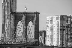 Brooklyn Bridge (Alejandro Ortiz III) Tags: 6d alejandroortiziii alex alexortiz allrightsreserved brooklyn canon canoneos copyright2016 copyright2016alejandroortiziii digital eos lightroom lightroom3 newjersey newyork newyorkcity rahway shbnggrth alexortizphotogmailcom copyright2016alejandroortiziii 2016