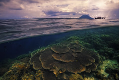 Calypso (AndersonImages) Tags: bunaken diving indonesia over under split view island volcano beach sulawesi