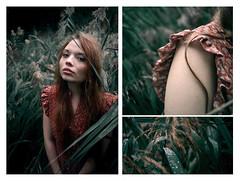 Helna (nne) Tags: annekraemer krmer kramer kraemer girl woman portrait model rain wet soft gras drops hair red dress romantic romance summer summerrain