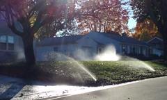 AN AUTUMN DRIVE-BY SHOOTING (photodittmer) Tags: sun sunlight autumn tree color water sprinkler highlight