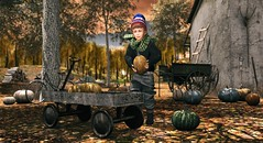 Neither genius, fame, nor love shows the greatness of the soul.  Only kindness can do that. (Skippy Beresford) Tags: boy child childhood autumn fall pumpkin patch farm wagon share kindness