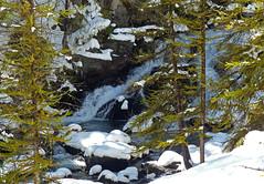 La cascade  travers les mlzes (myvalleylil1) Tags: france alpes montagne mountain hautesalpes nvache