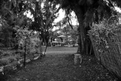 my garden ~ meu quintal (Rodrigo Uriartt) Tags: garden meu quintal countryside bluehour goldenhour wide sunset fujifilm xpro1 betyehoshua israel handheld