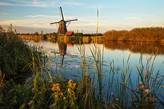 Nieuw-Lekkerland - Kinderdijk (2) (ジェイリー) Tags: nieuwlekkerland kinderdijk 新萊克蘭 小孩堤防 荷蘭 南荷蘭 southholland sunset 戶外