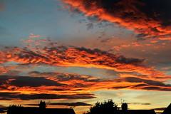 AUTUMN SUNSET (P.J.S. PHOTOGRAPHY) Tags: autum sunset norton derwent 2016