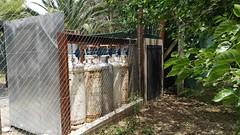 IMG_20161119_120746 (werkalecinmuebes) Tags: fisherton rosario casa venta argentina aldea golf