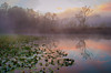 Dawn at Beaver Marsh (horizontal) (Hitzeman Photography) Tags: water reflections cuyahogavalleynationalpark trees serene rocks brecksville ohio unitedstates us sharedonwebsite droh award mayslake