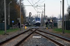 NSR SLT at Waddinxveen, November 26, 2016 (cklx) Tags: gouwelijn nsr slt boskoop waddinxveen